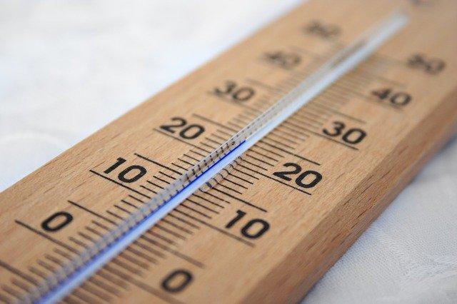 胡蝶蘭を育てるのに適した温度は15~25℃前後